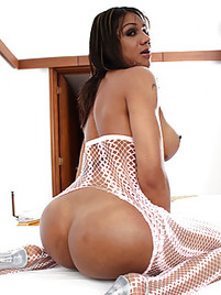 Big booty shemale porn